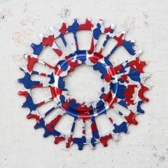 *AARN* direct mount 1x chainring (red white and blue camo)