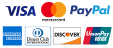 Visa, Master Card, Pay Pal, American Express